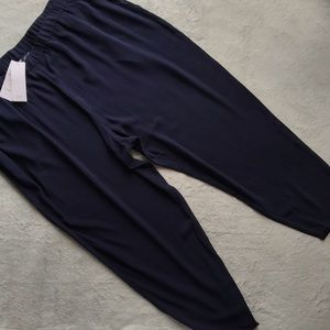 NWT Eileen Fisher Silk Crepe Slouchy Ankle Pant 2X